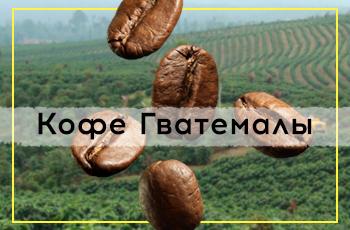 Кофейные секреты Гватемалы