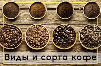 Виды и сорта кофе – такие одинаковые и такие разные